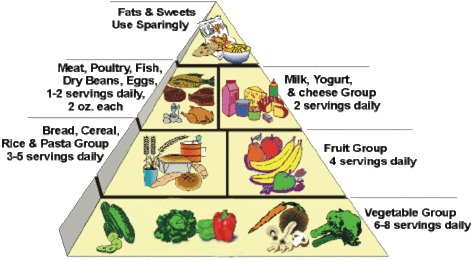 Adjusted food pyramid